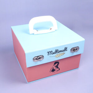 cardboard box model with special compartment bag
